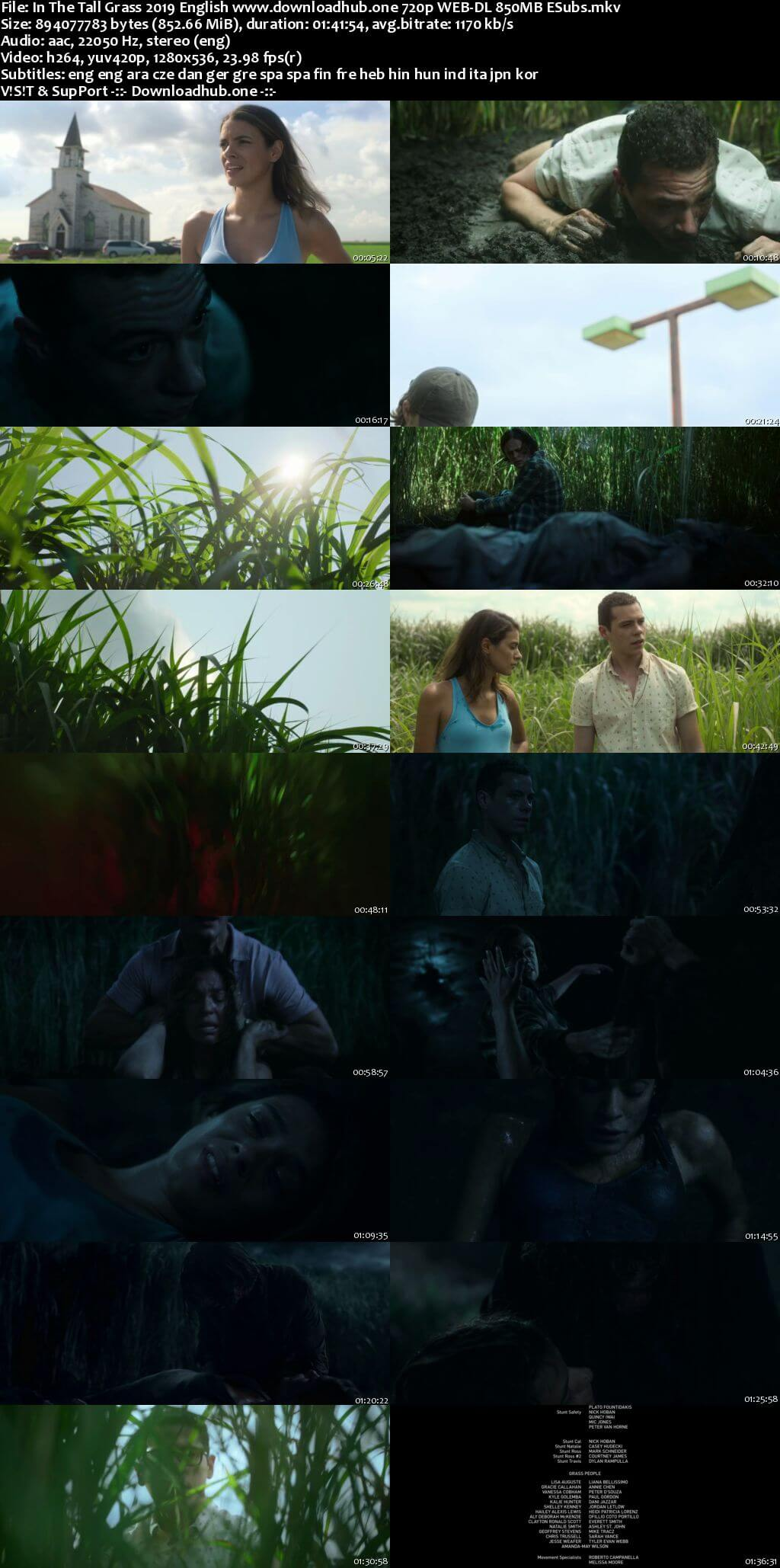 In the Tall Grass 2019 English 720p NF Web-DL 850MB MSubs