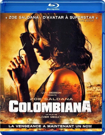 Colombiana 2011 Dual Audio Hindi 720p BluRay 950MB