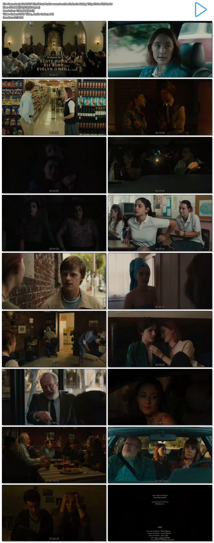Lady Bird 2017 Hindi Dual Audio 450MB BluRay 720p ESubs HEVC