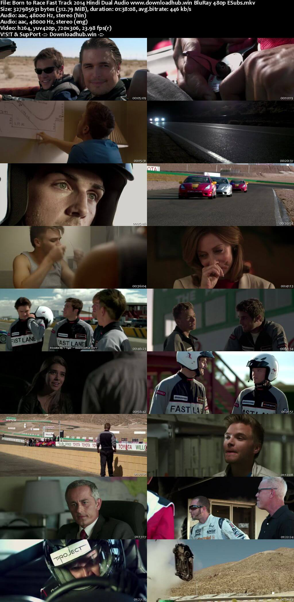 Born to Race Fast Track 2014 Hindi Dual Audio 300MB BluRay 480p ESubs