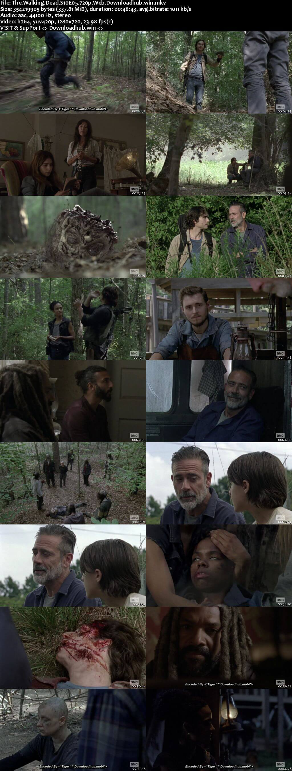 The Walking Dead S10E05 300MB WEB-DL 720p x264