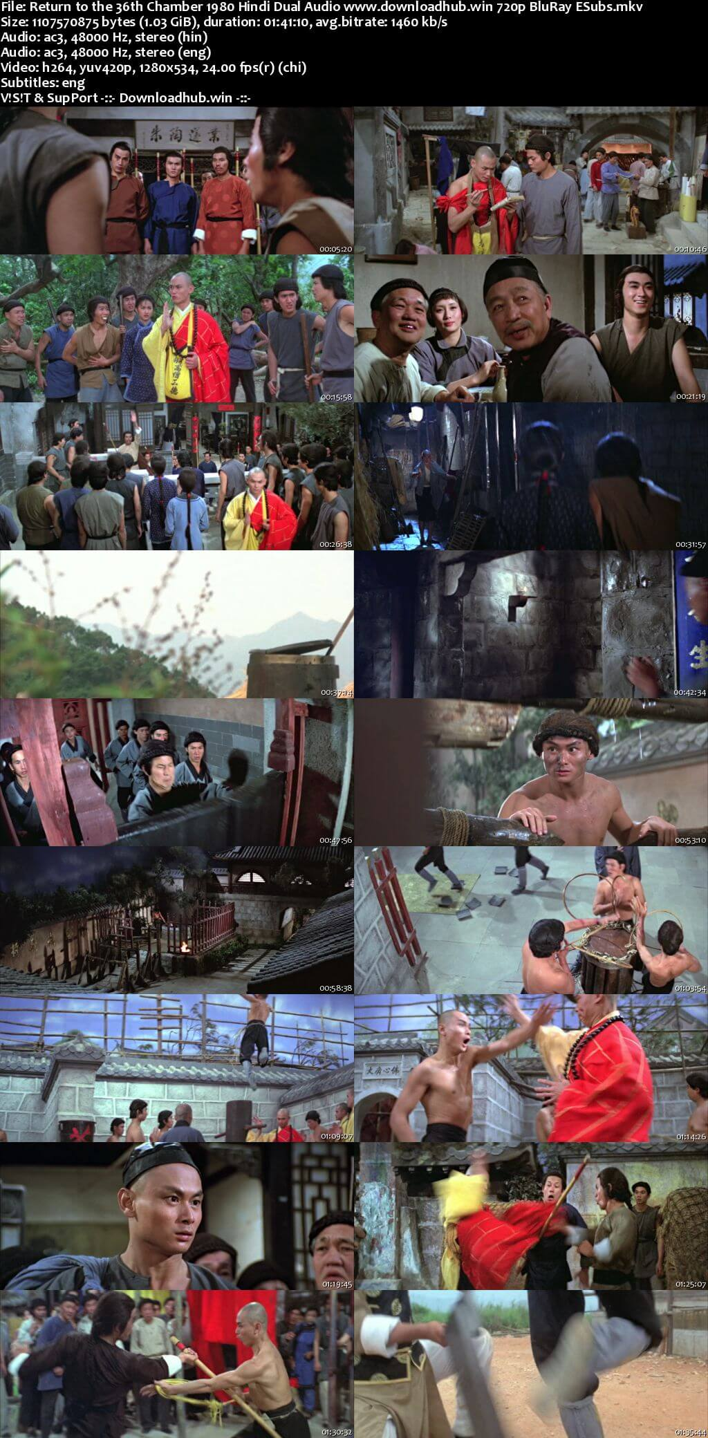 Return to the 36th Chamber 1980 Hindi Dual Audio 720p BluRay ESubs