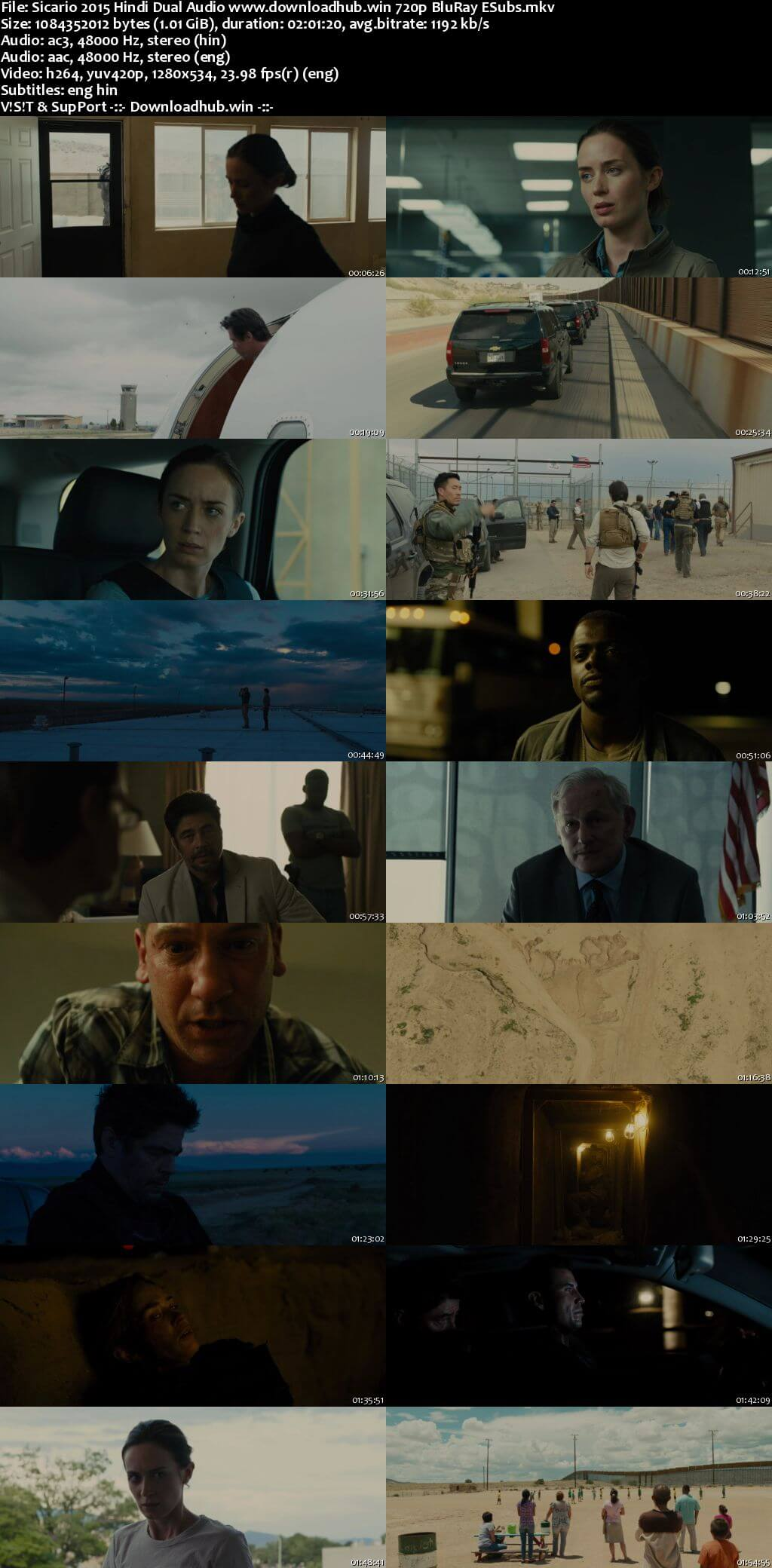 Sicario 2015 Hindi Dual Audio 720p BluRay ESubs