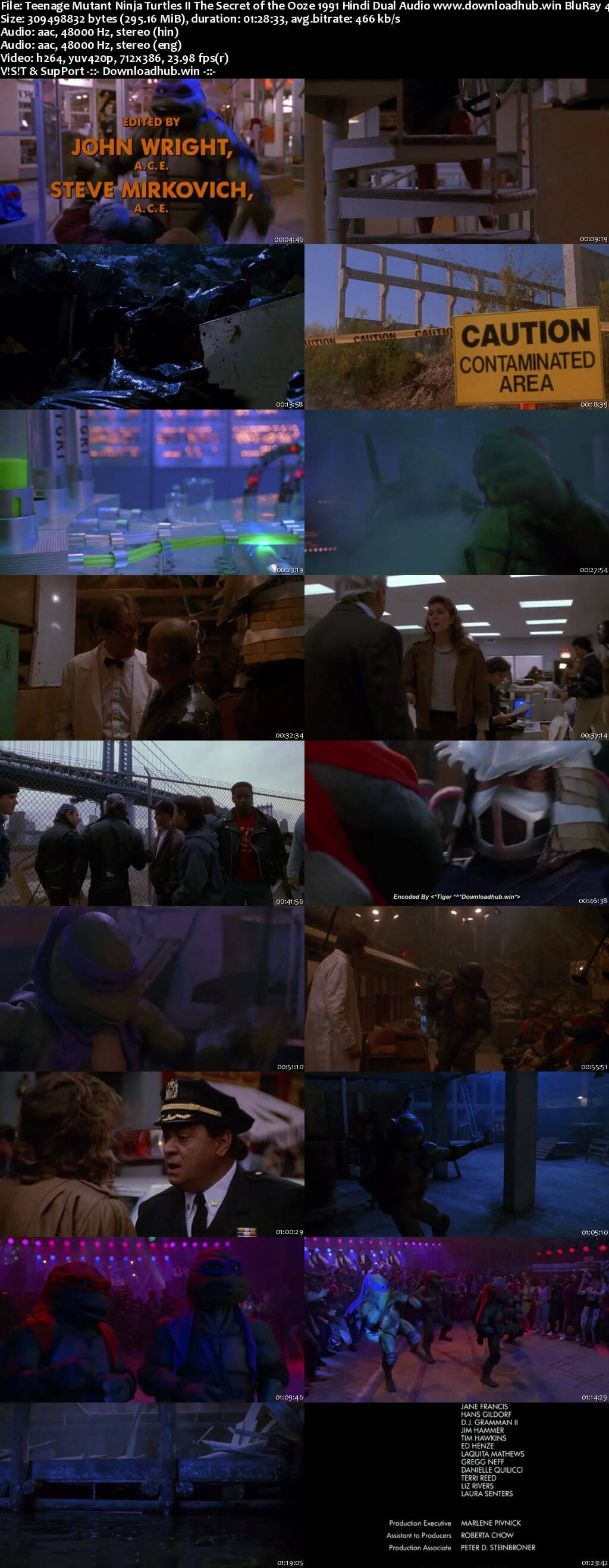 Teenage Mutant Ninja Turtles II The Secret of the Ooze 1991 Hindi Dual Audio 300MB BluRay 480p ESubs