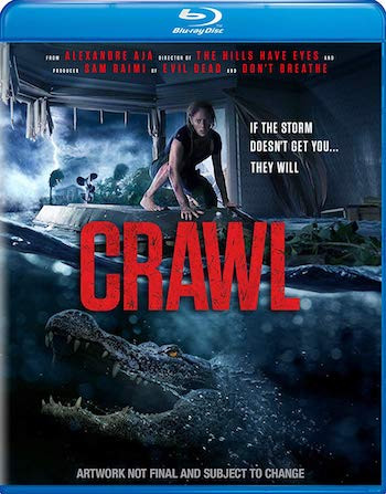 Crawl 2019 Dual Audio Hindi 720p BluRay 800mb