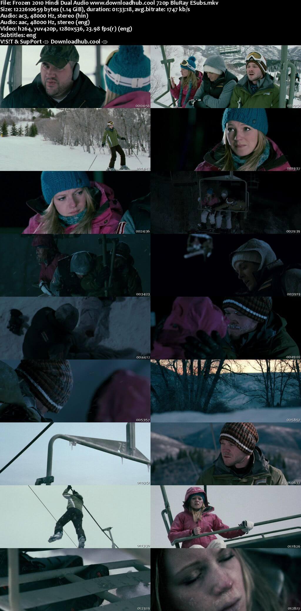 Frozen 2010 Hindi Dual Audio 720p BluRay ESubs