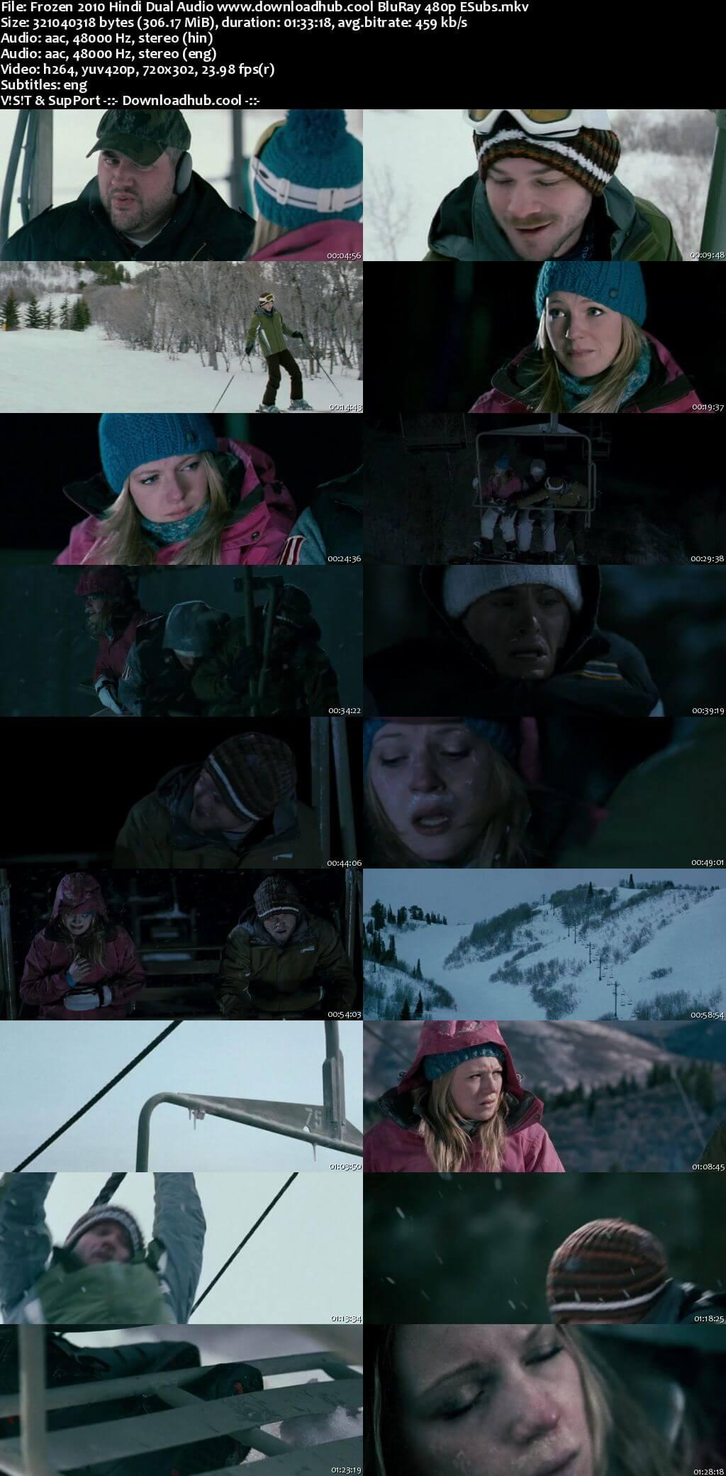 Frozen 2010 Hindi Dual Audio 300MB BluRay 480p ESubs