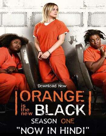 Orange Is the New Black S01 Complete Hindi Dual Audio 720p Web-DL ESubs