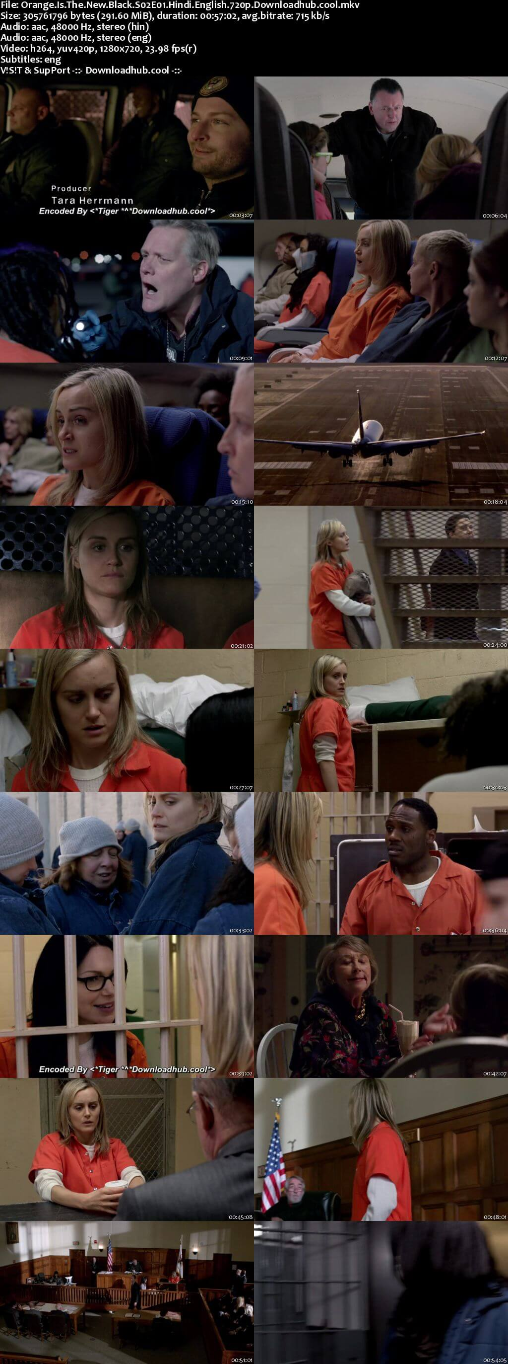 Orange Is the New Black S02 Complete Hindi Dual Audio 720p Web-DL ESubs