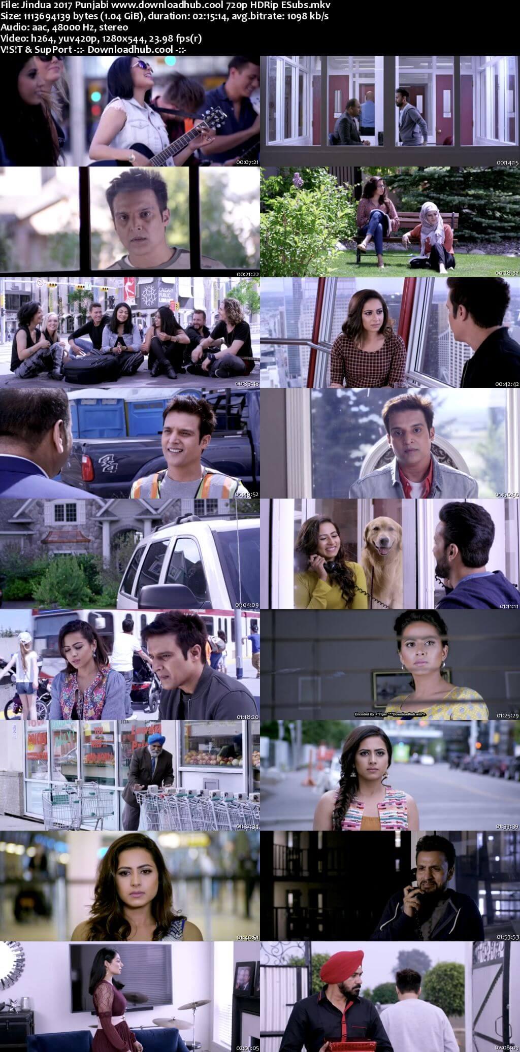 Jindua 2017 Punjabi 720p HDRip ESubs