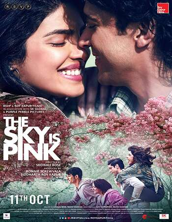 The Sky Is Pink 2019 Hindi 700MB HDRip 720p ESubs HEVC
