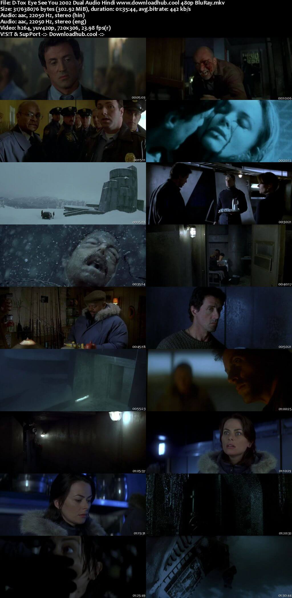 D-Tox Eye See You 2002 Hindi Dual Audio 300MB BluRay 480p ESubs