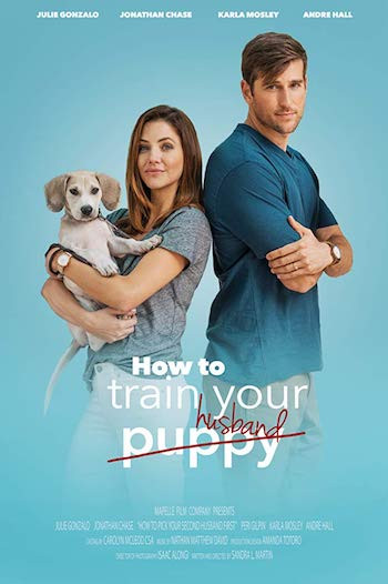 How To Train Your Husband 2017 Dual Audio Hindi Movie Download