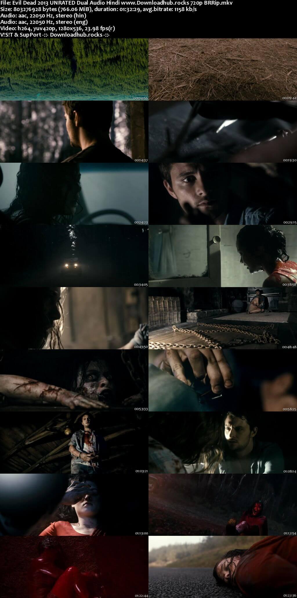 Evil Dead 2013 Hindi Dual Audio 720p BluRay x264