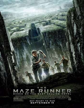 The Maze Runner 2014 Hindi Dual Audio 600MB BluRay 720p ESubs HEVC