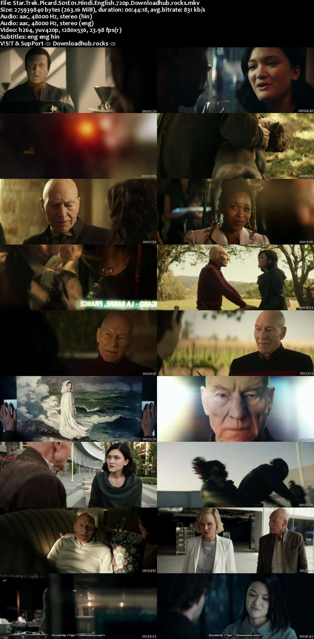 Star Trek Picard S01 Complete Hindi Dual Audio 720p Web-DL MSubs