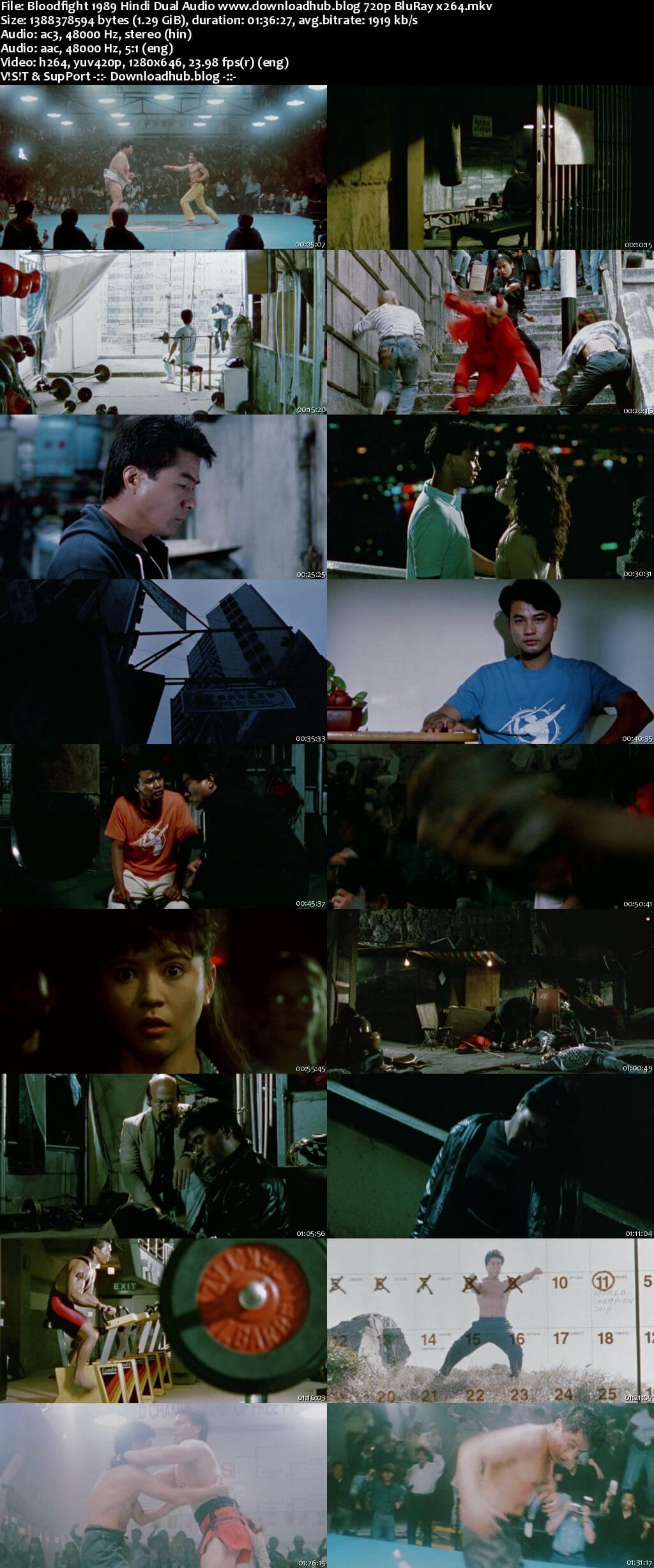 Bloodfight 1989 Hindi Dual Audio 720p BluRay x264