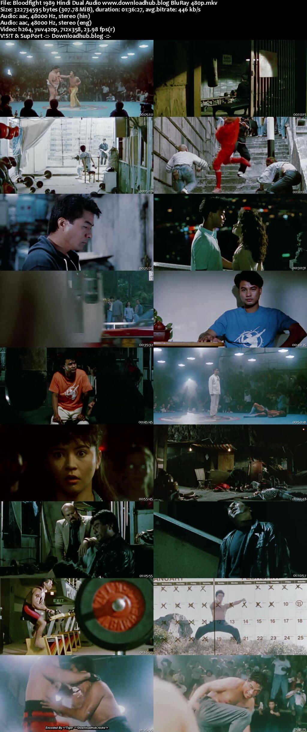 Bloodfight 1989 Hindi Dual Audio 300MB BluRay 480p