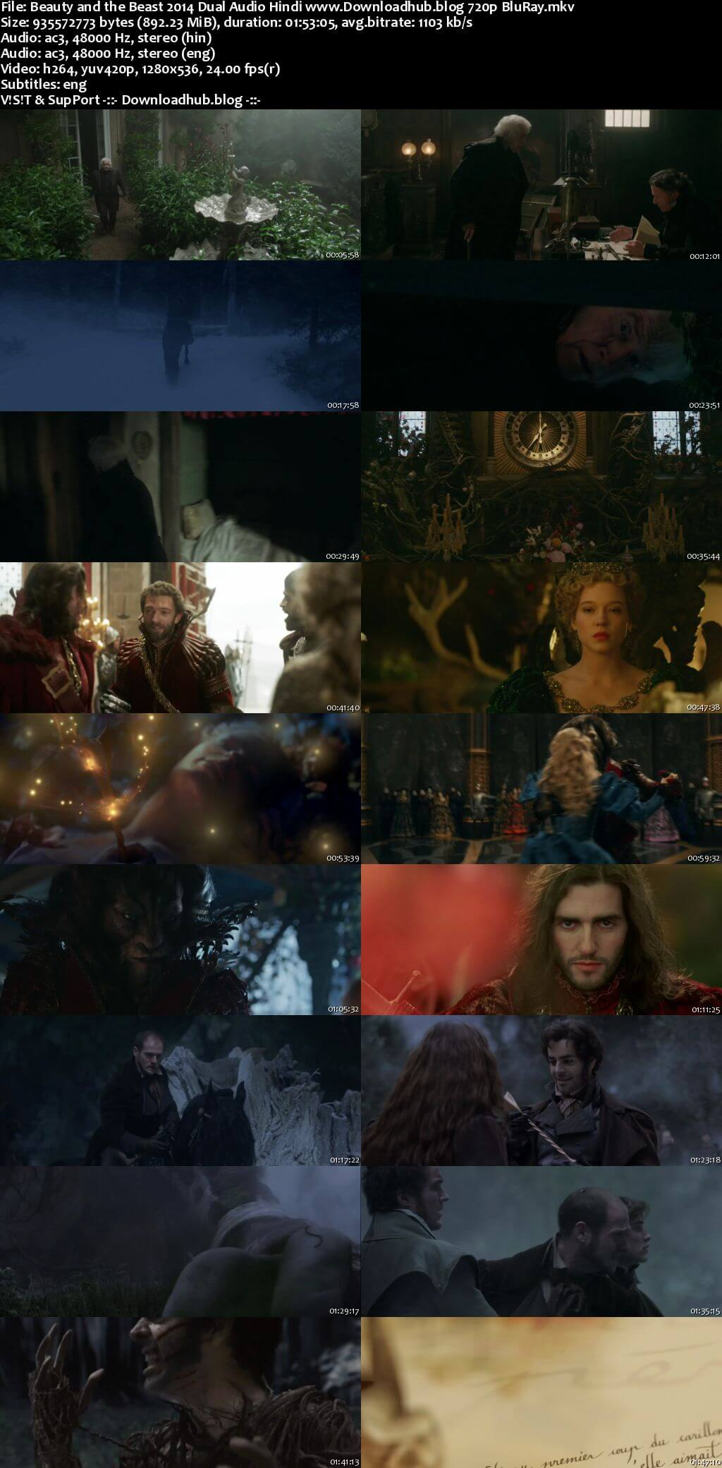 Beauty and the Beast 2014 Hindi Dual Audio 720p BluRay ESubs