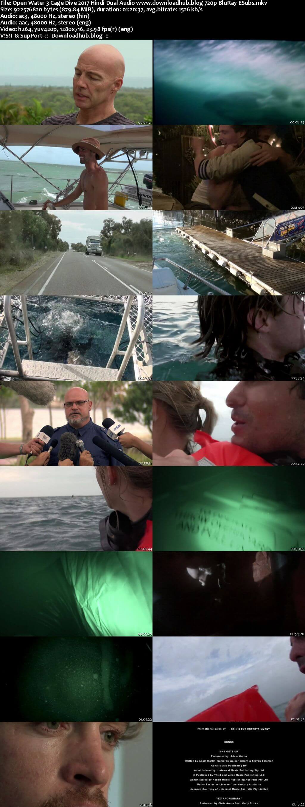 Open Water 3 Cage Dive 2017 Hindi Dual Audio 720p BluRay ESubs