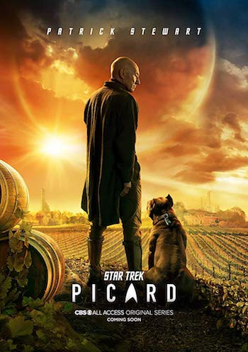 Star Trek Picard S01 Complete Dual Audio Hindi 720p 480p WEB-DL