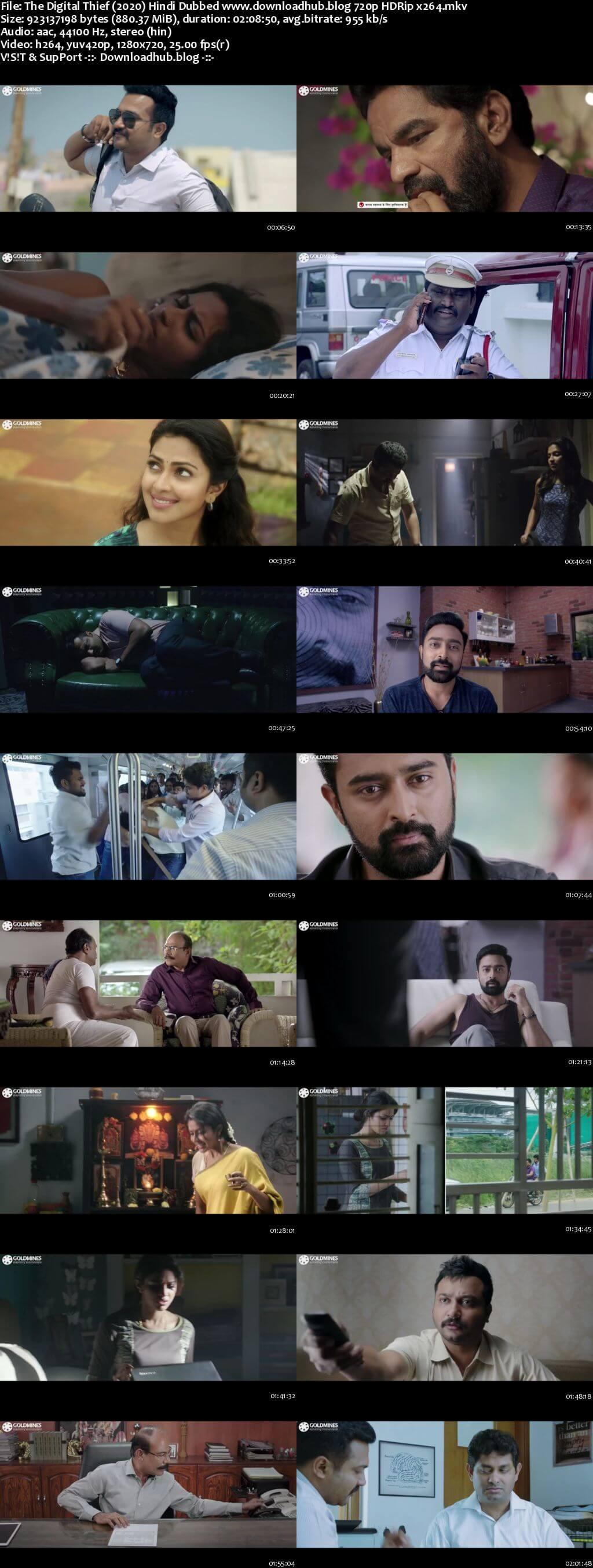 The Digital Thief 2020 Hindi Dubbed 720p HDRip x264