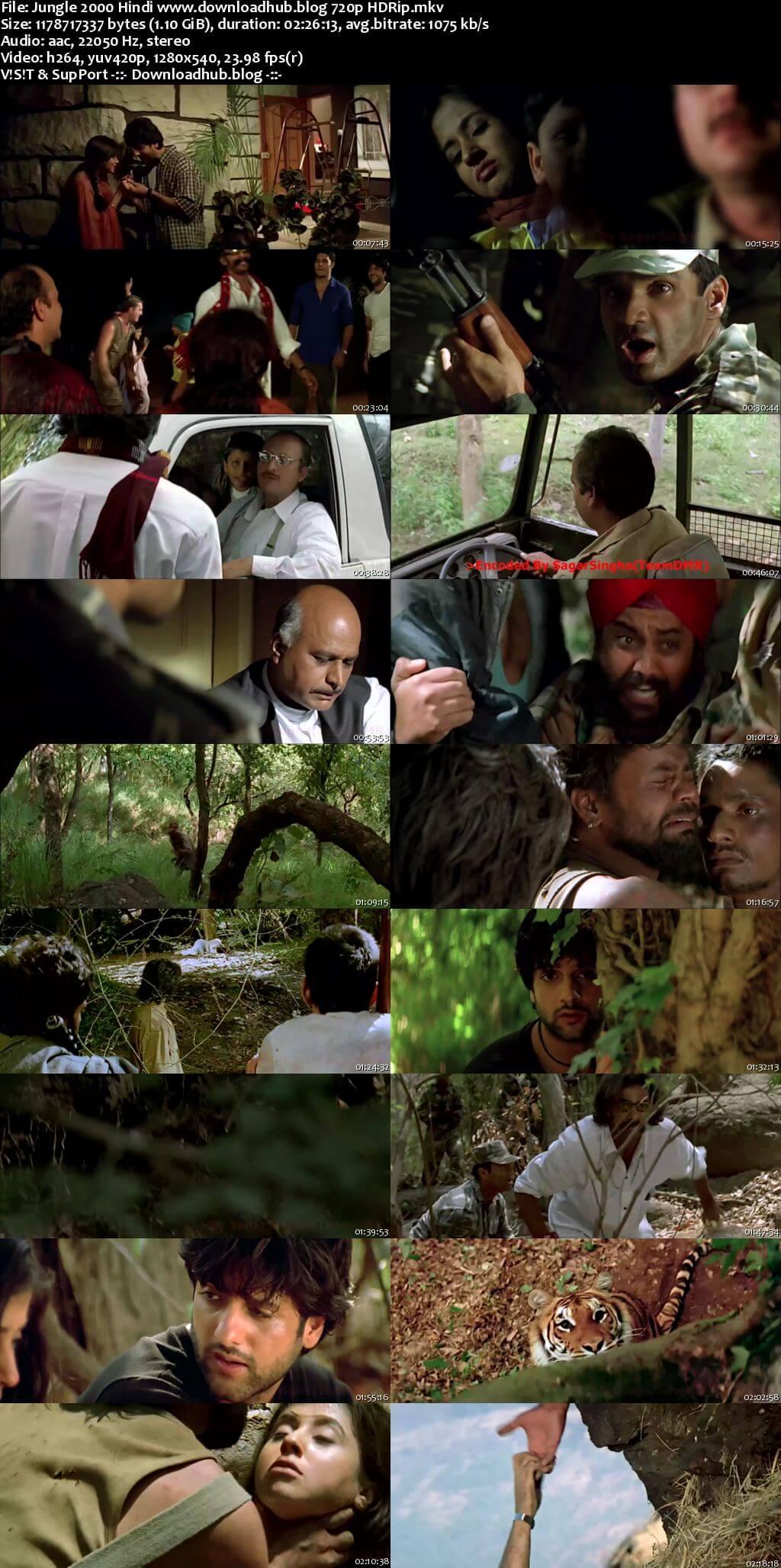 Jungle 2000 Hindi 720p HDRip x264