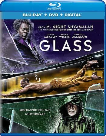 Glass 2019 Dual Audio Hindi 720p BluRay 1GB