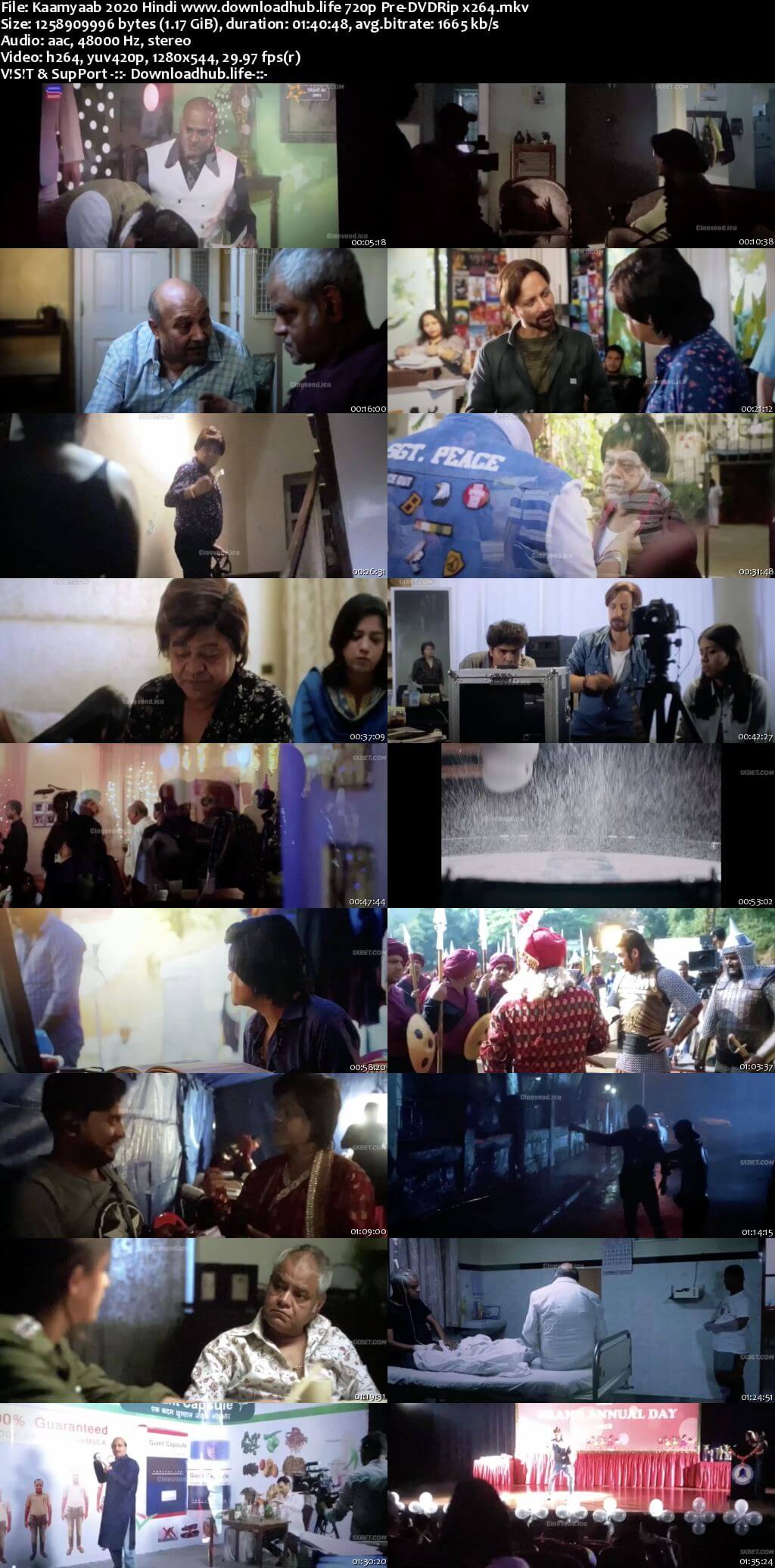 Kaamyaab 2020 Hindi 720p 480p Pre-DVDRip x264