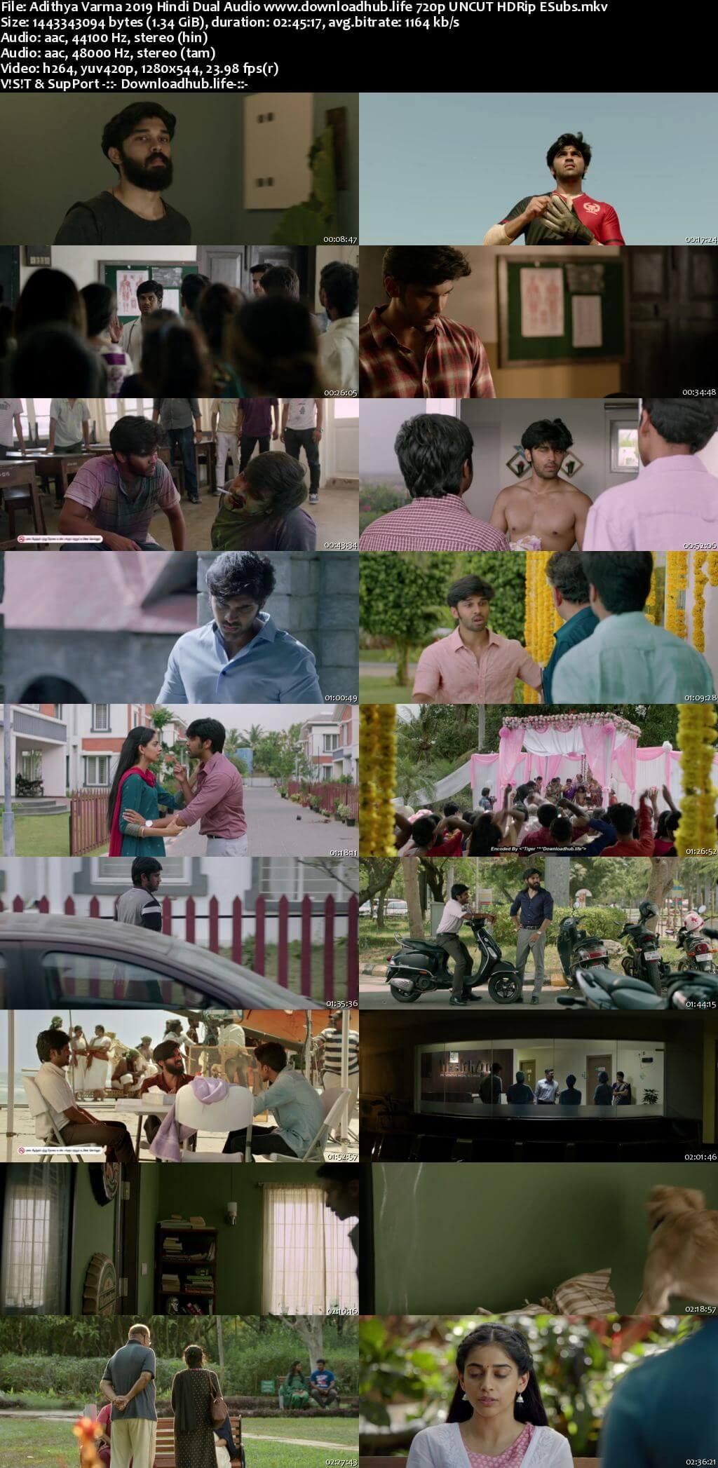 Adithya Varma 2019 Hindi Dual Audio 720p UNCUT HDRip ESubs