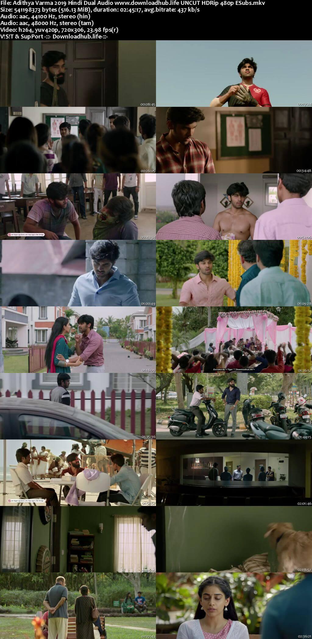 Adithya Varma 2019 Hindi Dual Audio 500MB UNCUT HDRip 480p ESubs