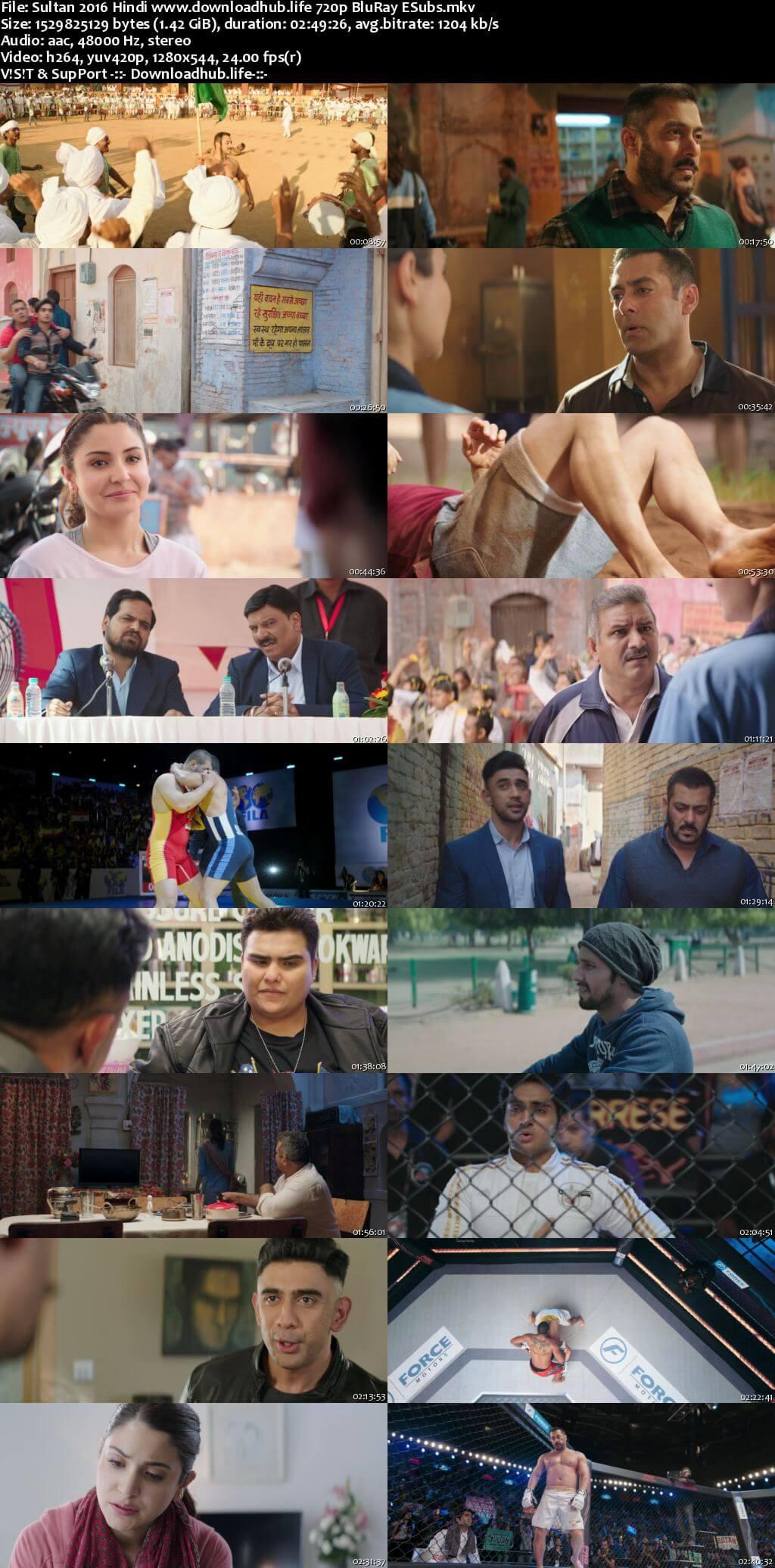 Sultan 2016 Hindi 720p BluRay ESubs