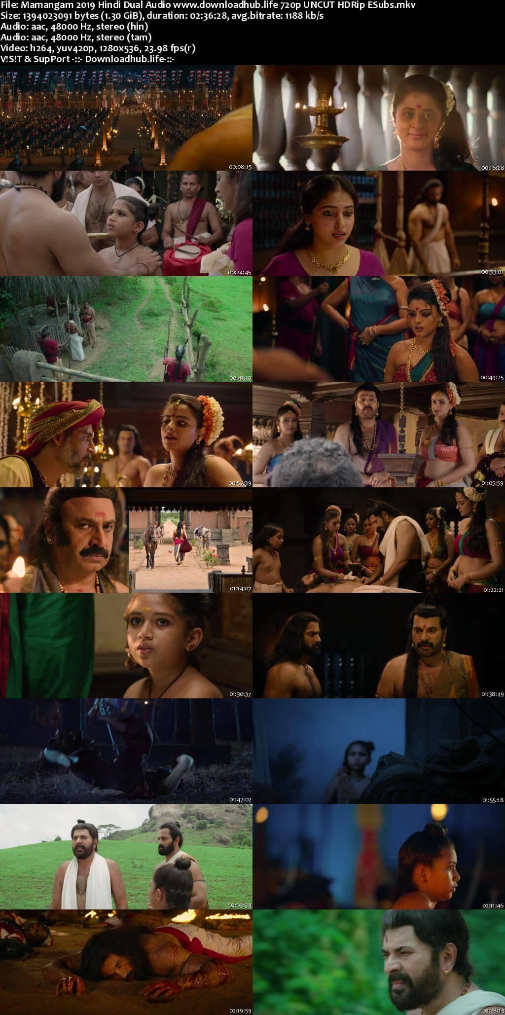 Mamangam 2019 Hindi Dual Audio 720p UNCUT HDRip ESubs