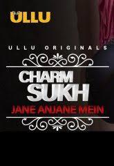 Charmsukh (Jane Anjane Mein) 2020 Hindi S01 ULLU WEB Series 720p HDRip x264