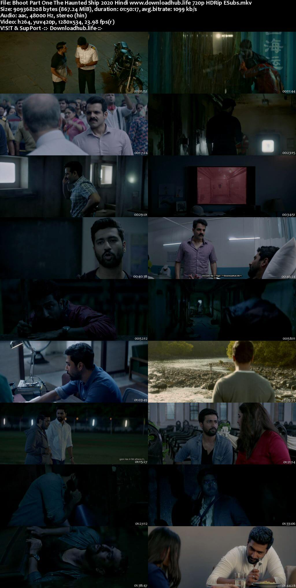 Bhoot Part One The Haunted Ship 2020 Hindi 720p HDRip ESubs