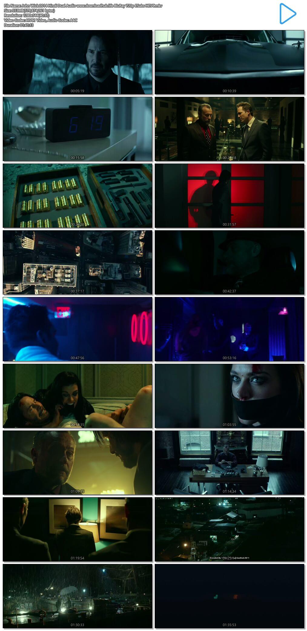John Wick 2014 Hindi Dual Audio 550MB BluRay 720p ESubs HEVC