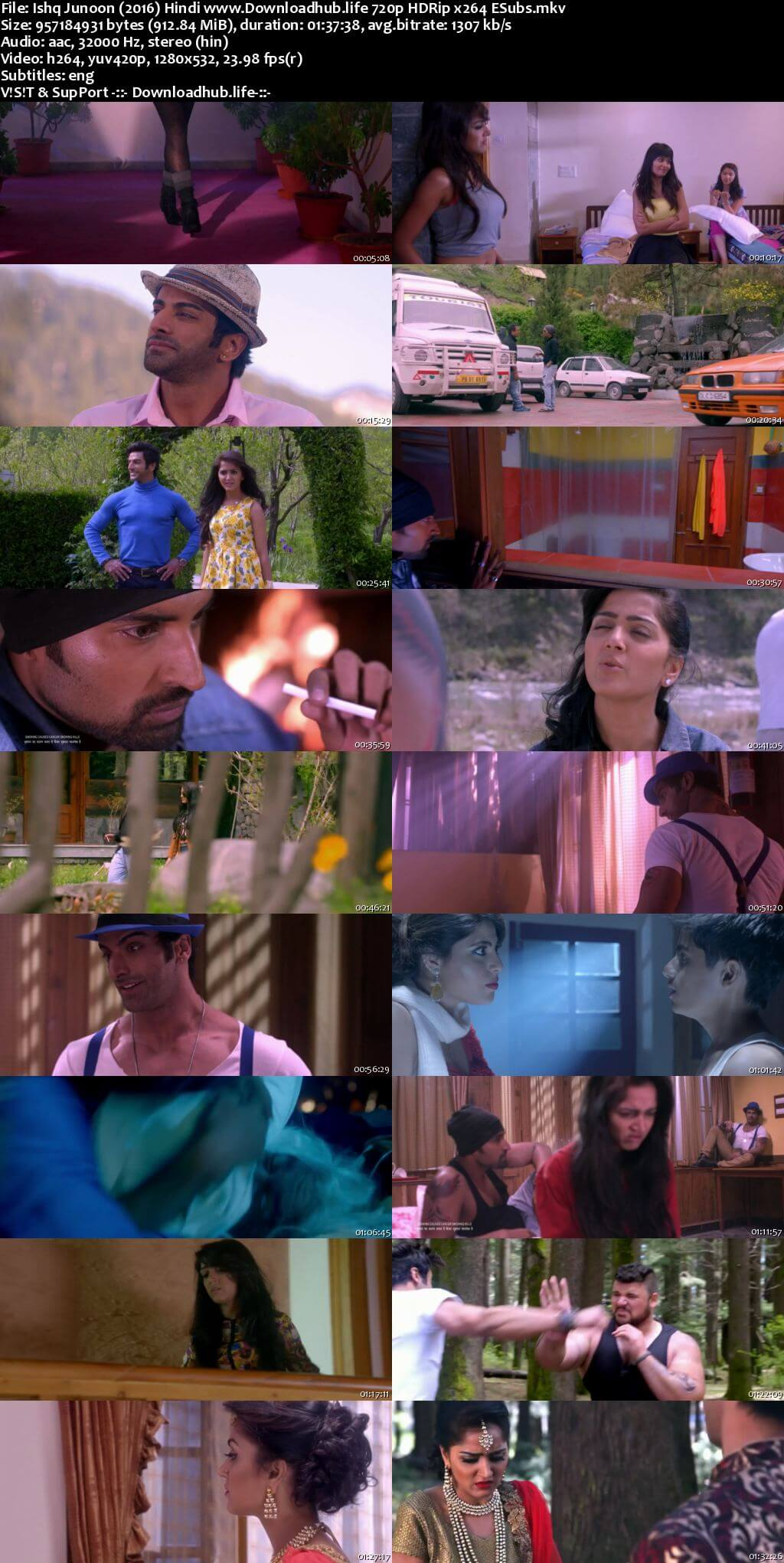 Ishq Junoon The Heat is On 2016 Hindi 720p HDRip ESubs