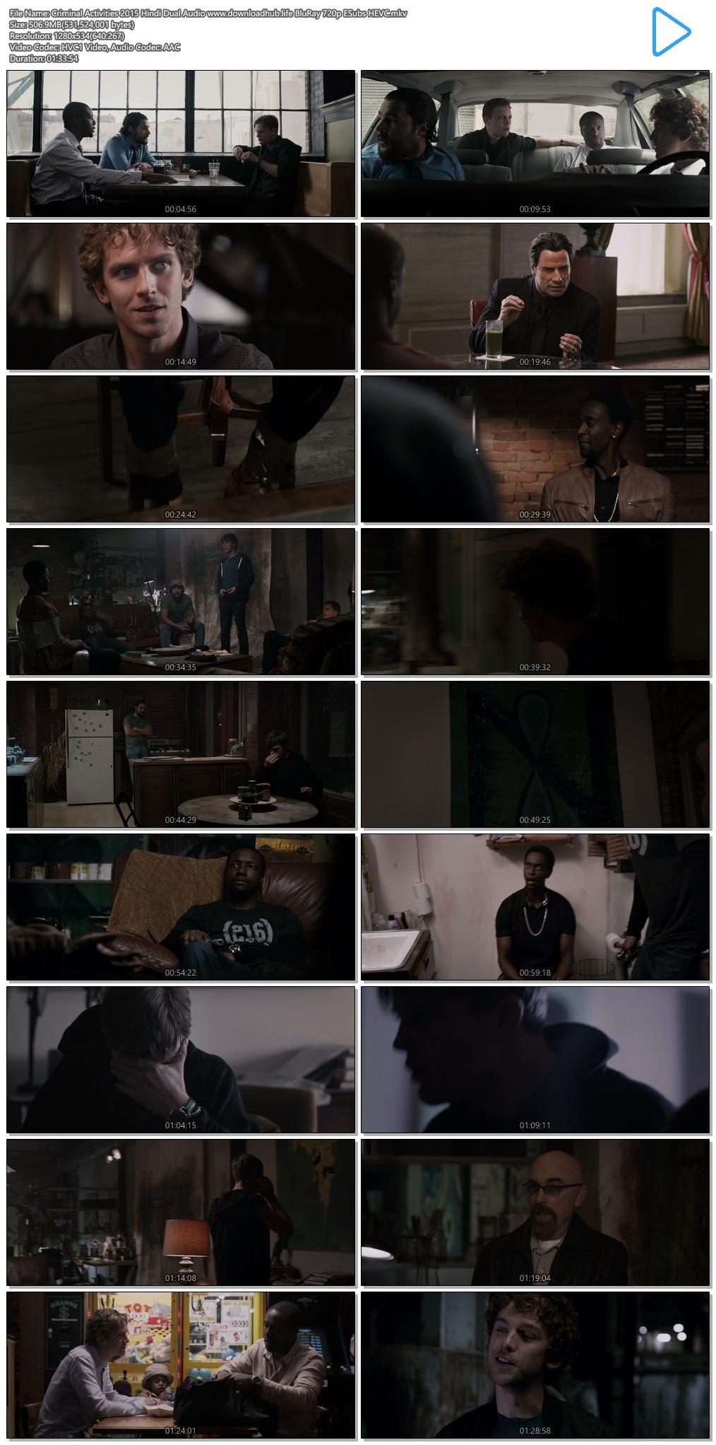 Criminal Activities 2015 Hindi Dual Audio 500MB BluRay 720p ESubs HEVC