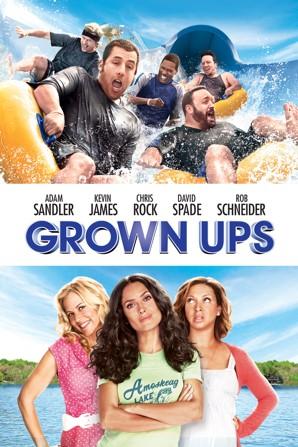 Grown Ups 2010 Dual Audio Hindi 480p BluRay x264 300MB