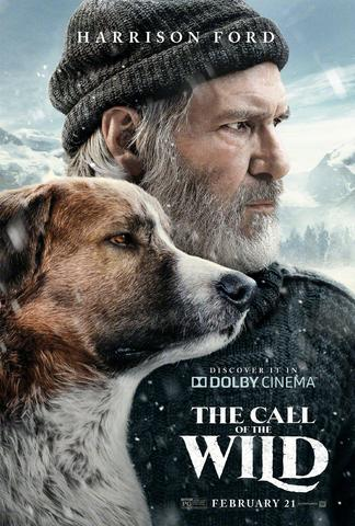The Call of the Wild 2020 English 480p BluRay x264 300MB ESubs
