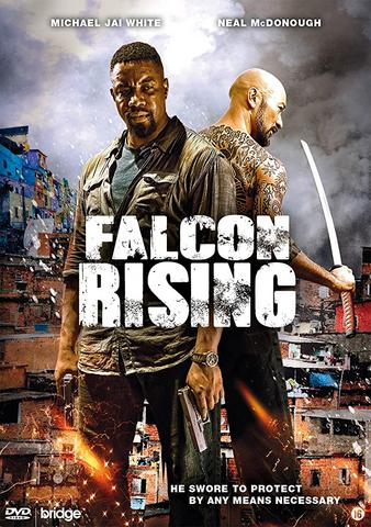 Falcon Rising 2014 Dual Audio Hindi 480p BluRay x264 300MB ESubs