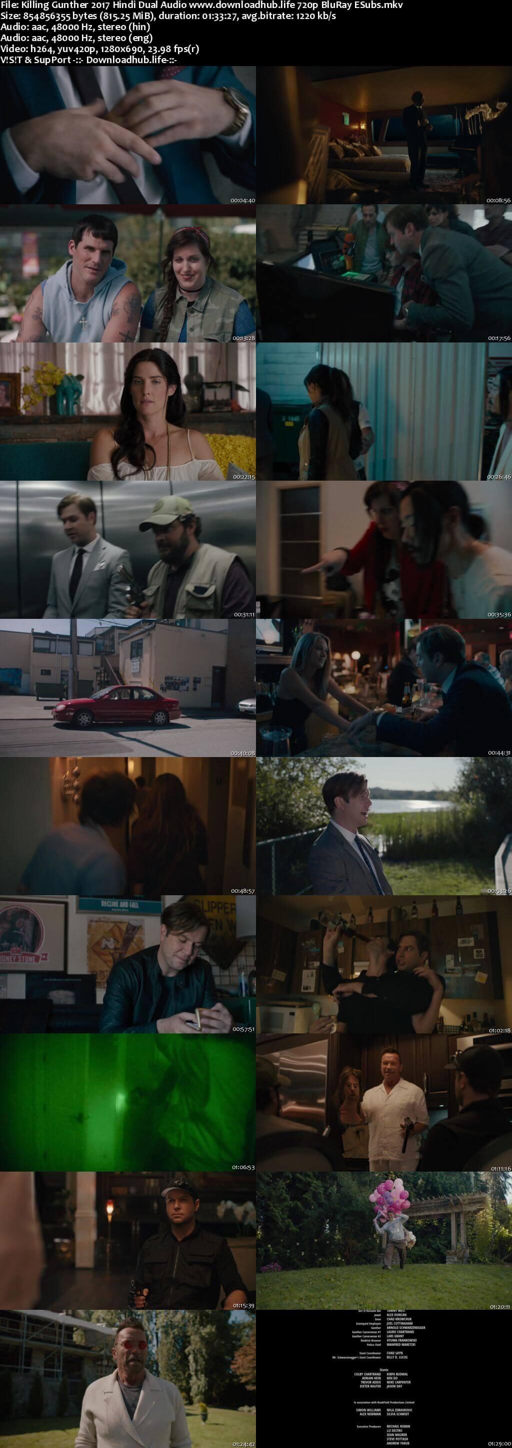Killing Gunther 2017 Hindi Dual Audio 720p BluRay ESubs