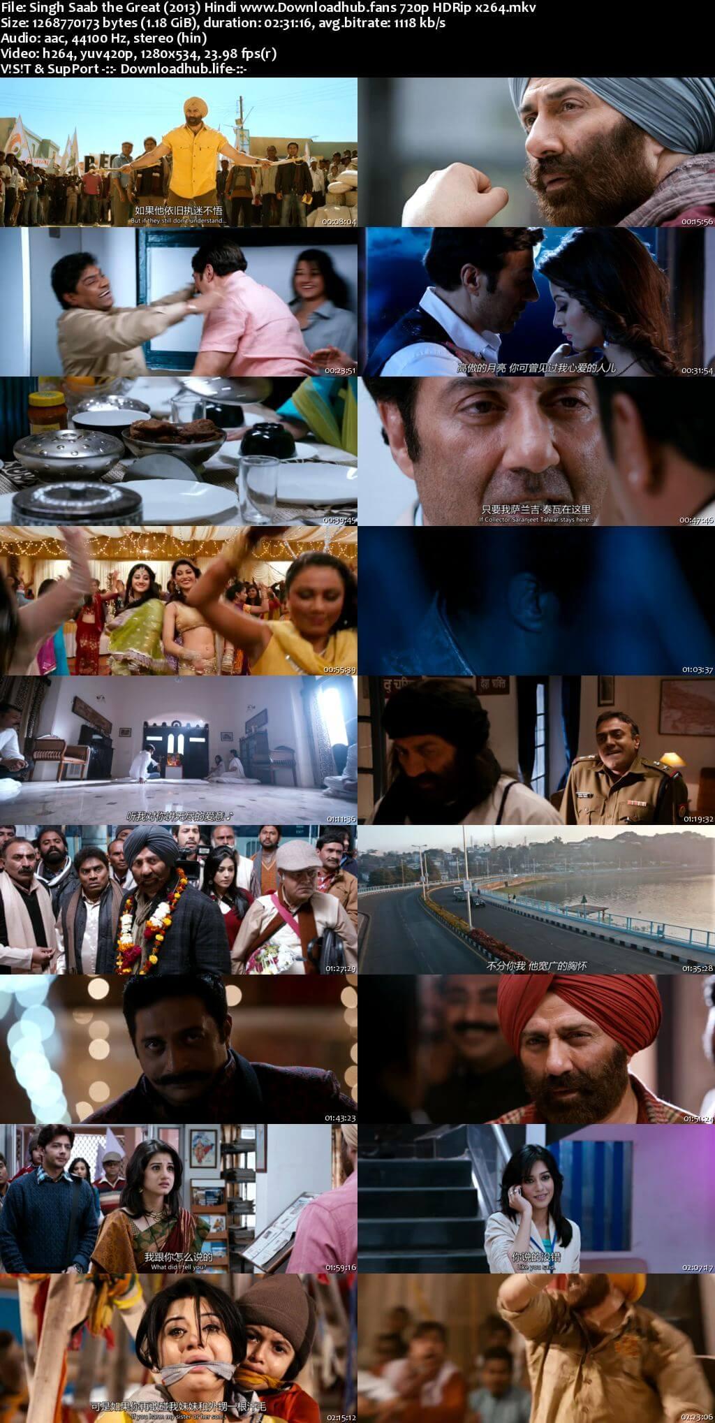 Singh Saab the Great 2013 Hindi 720p HDRip x264
