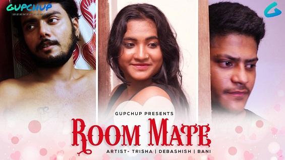 18+ Room Mate Hindi S01E02 Web Series Watch Online