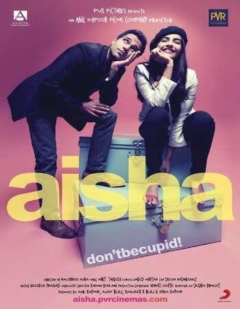 Aisha 2010 Full Hindi Movie 480p BRRip Free Download
