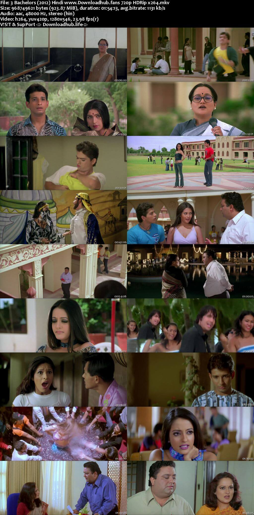 3 Bachelors 2012 Hindi 720p HDRip x264