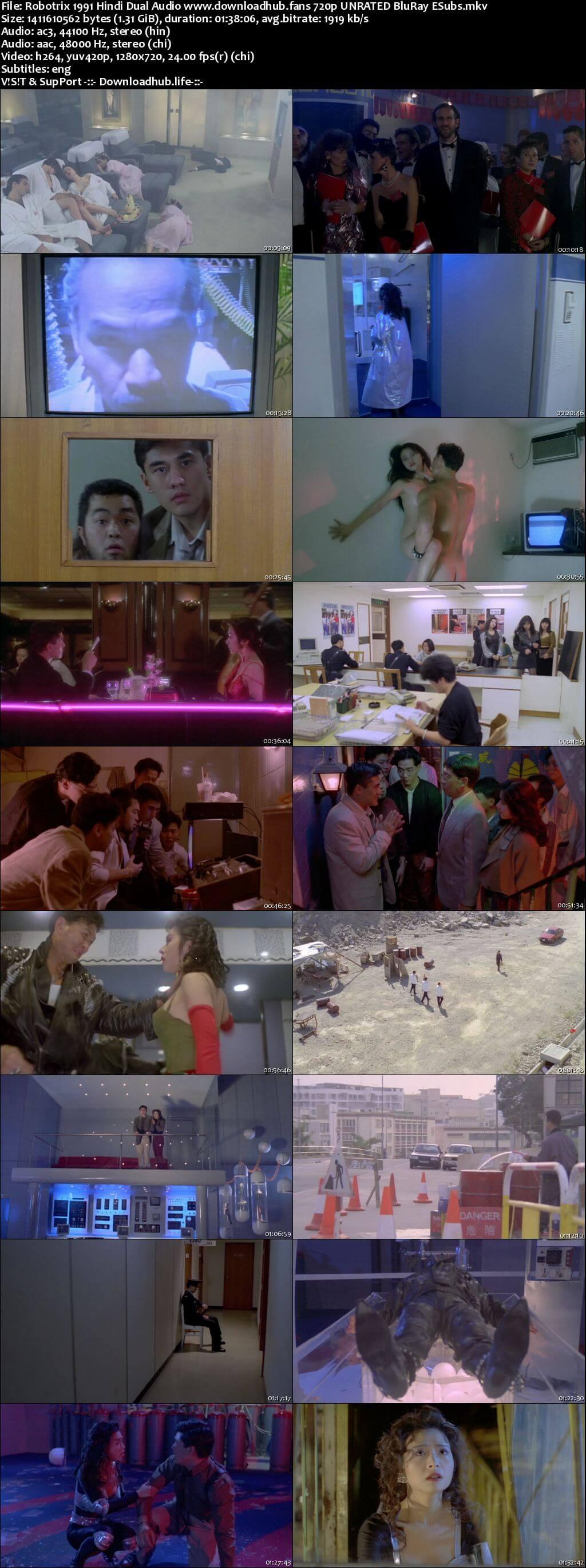Robotrix 1991 Hindi Dual Audio 720p UNRATED BluRay ESubs