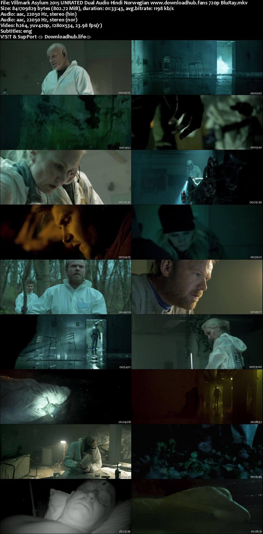 Villmark Asylum 2015 Hindi Dual Audio 720p UNRATED BluRay ESubs