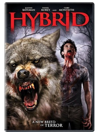Hybrid 2007 Dual Audio Hindi Movie Download