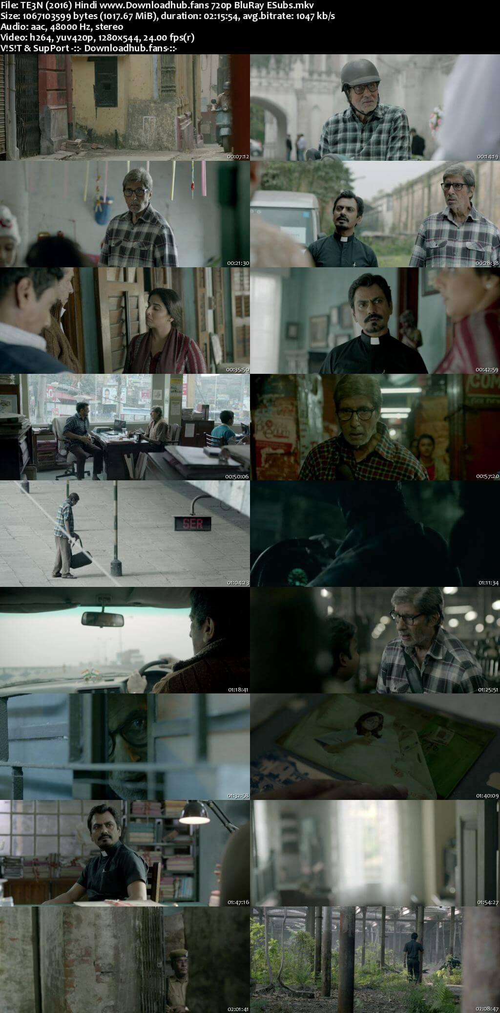 Te3n 2016 Hindi 720p BluRay ESubs